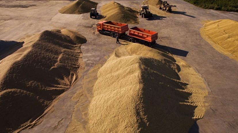 Минсельхоз России предлагает увеличить объём зерна для реализации из интервенционного фонда