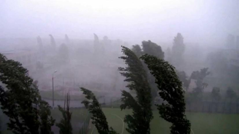 Спасатели предупредили о шквалистом усилении ветра в Свердловской области до 25 м/с