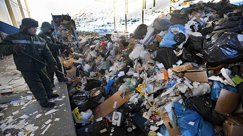 В Подмосковье за месяц задержали более 260 человек за выброс мусора в неустановленных местах