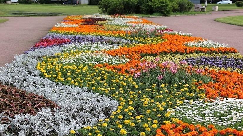 В Петербурге пройдёт конкурс «Парад садов»