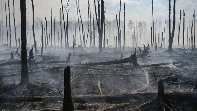 Пожар на предполагаемом месте падения ракеты в Эстонии потушен