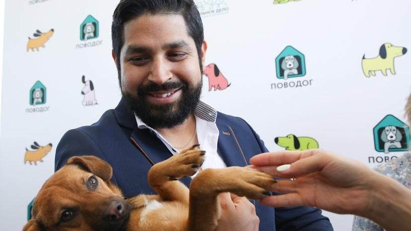 Перуанский болельщик рассказал о встрече со спасённой в Сочи собакой Бусинкой