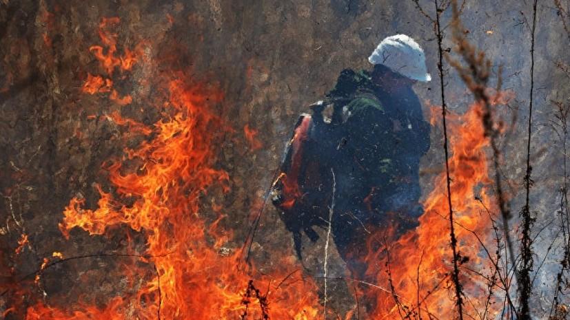 Площадь пожара в горах Крыма увеличилась до 75 га