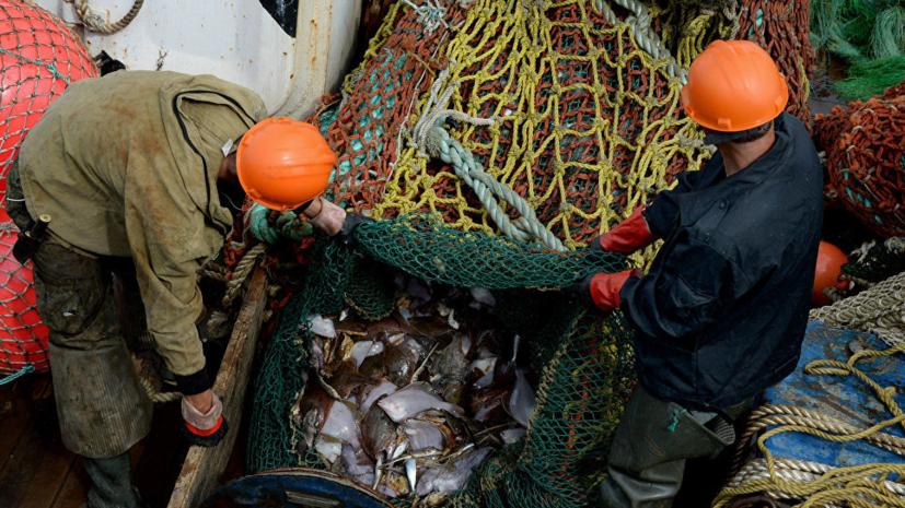 Стала известна программа Международного рыбопромышленного форума в Санкт-Петербурге. РИА Новости