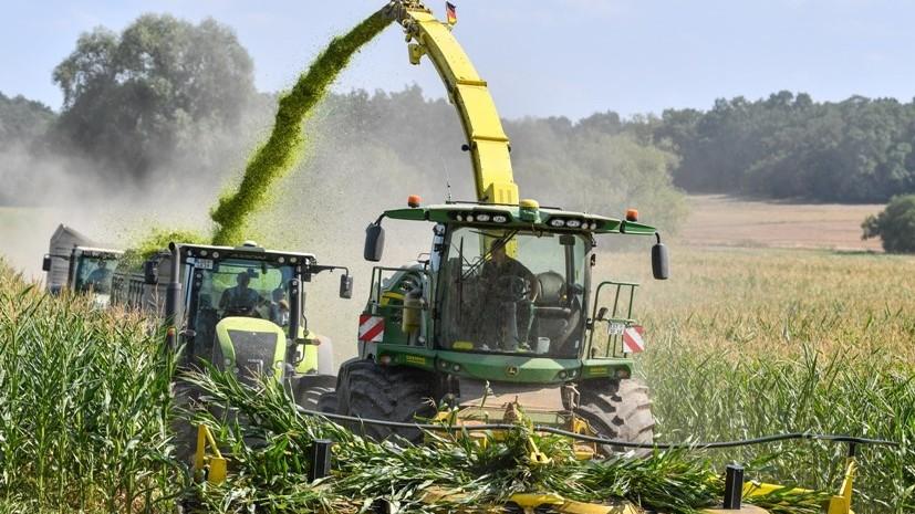 В Германии фермеры просят финансовой помощи у правительства из-за низких урожаев
