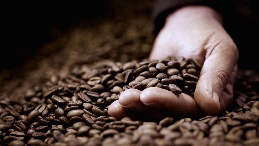 Молотые цены: почему стоимость кофе упала до 12-летнего минимума