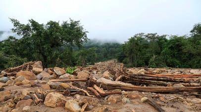 Более 20 человек погибли в результате оползней на юго-западе Индии