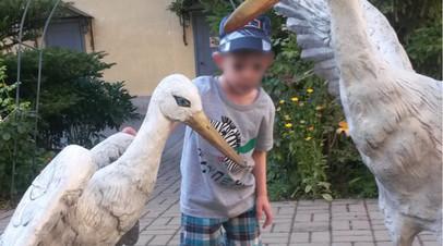 Семья из Подмосковья после решения суда смогла забрать из детдома Петербурга брата их приёмного сына