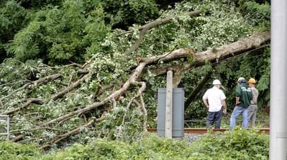 Сформировавшемуся в Тихом океане урагану «Лэйн» присвоили третью категорию