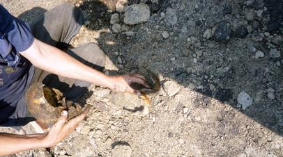 Жители села в Красноярском крае добиваются перезахоронения останков из обнаруженной братской могилы