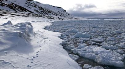 В РСТ оценили рост спроса на круизы в Арктику и Антарктику среди россиян