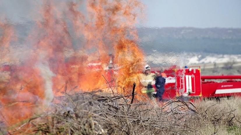 За лето в Кировской области сгорело более 12 гектаров леса