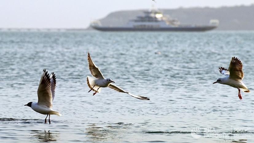 В Чёрном море спасли всех членов экипажа потерпевшего бедствие буксира