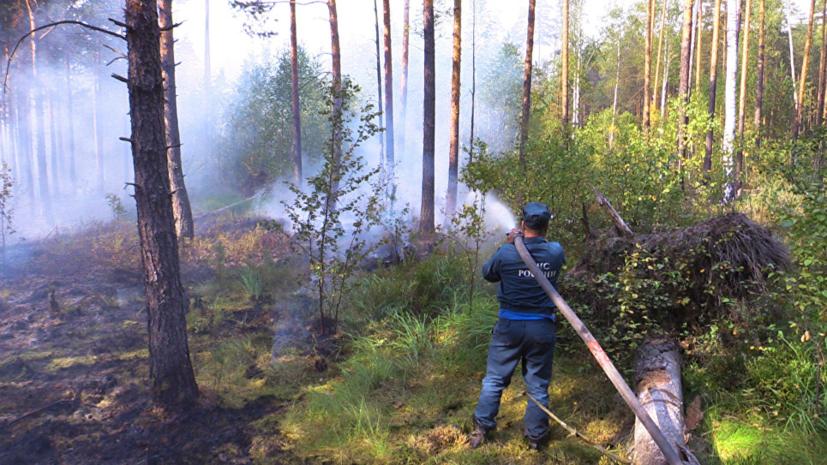 В Кировской области заявили о сохранении высокой пожароопасности