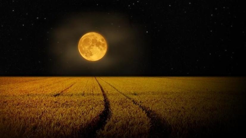 «Жатвенное» полнолуние можно будет увидеть 25 сентября в Москве