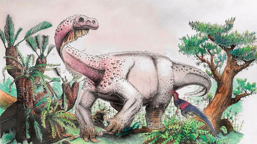 Доисторический гигант: учёные определили размеры самого крупного динозавра юрского периода