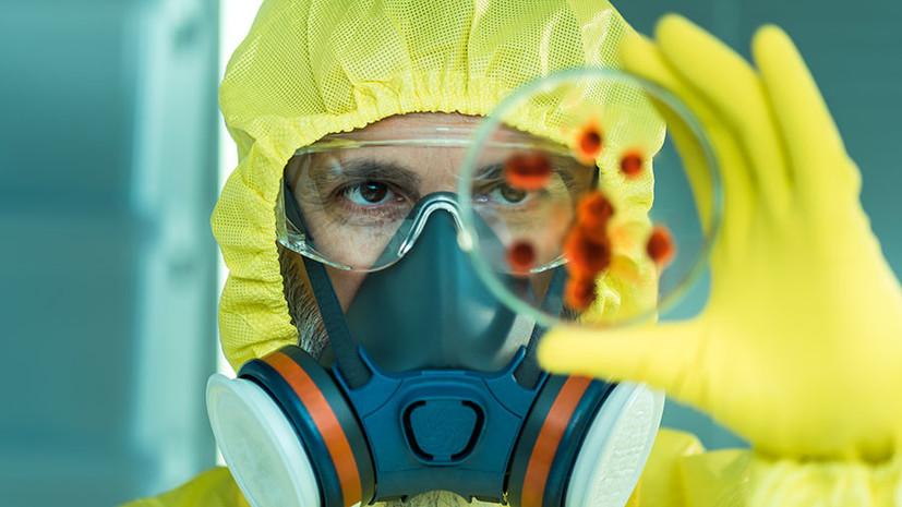 «Насекомые-союзники»: создают ли США биологическое оружие под видом научных проектов