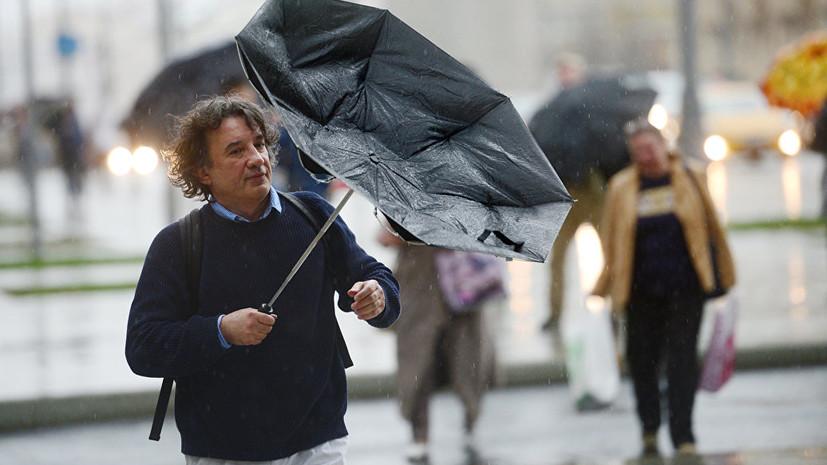 В МЧС предупредили о дожде и сильном ветре в Москве