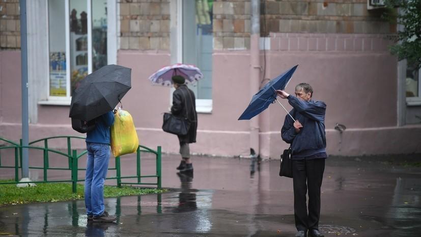 Спасатели предупредили о штормовом ветре с порывами до 16 м/с в Ленобласти