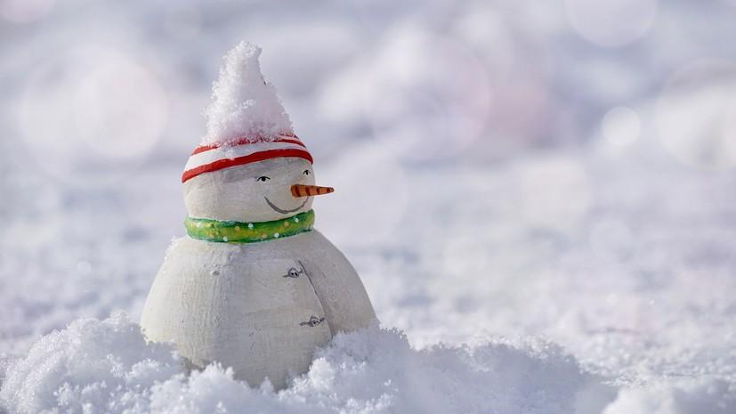 Синоптики прогнозируют снег в Новосибирской области 14 октября
