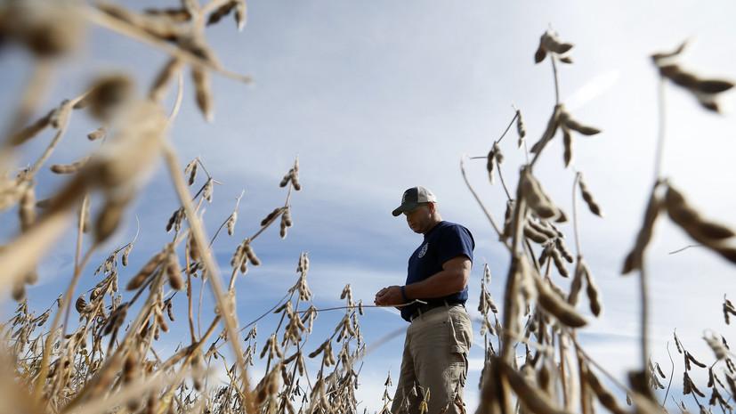 «Америка пострадает»: сельское хозяйство и автопром США могут столкнуться с кризисом из-за торговых пошлин Трампа
