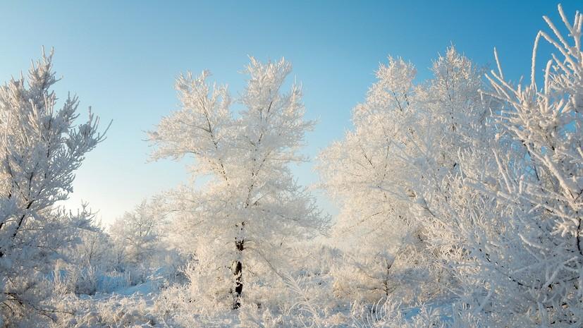 Синоптики предупредили жителей Москвы об «арктических» морозах