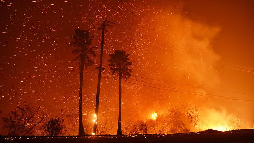 «Масштабы проблемы лишь нарастают»: почему США не могут взять под контроль ситуацию с пожарами в Калифорнии
