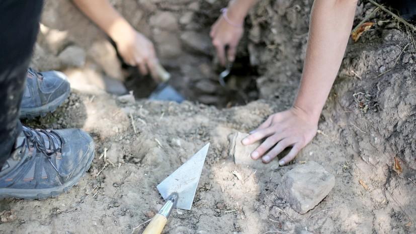В Подмосковье археологи нашли череп мамонта с кладом внутри