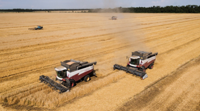 Фермеры Татарстана выступили за возвращение льготного кредитования ЛПХ
