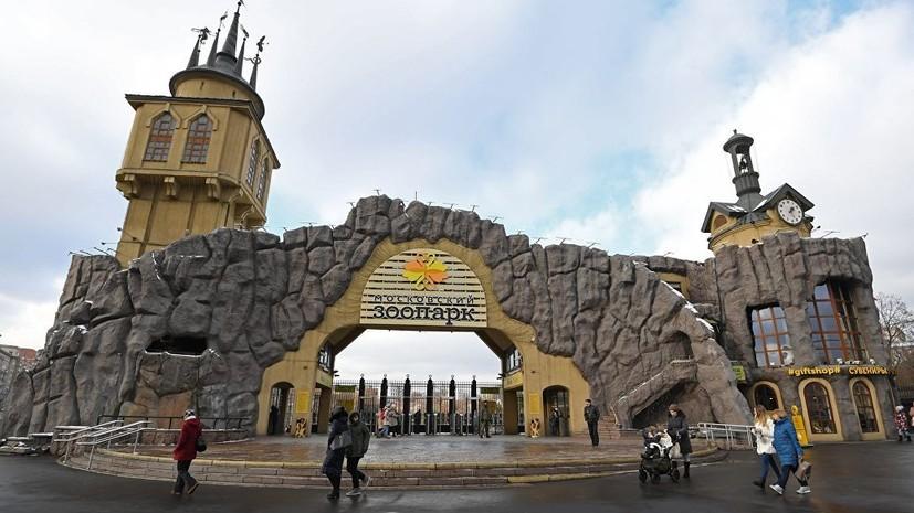 В столице рассказали детали плана развития Московского зоопарка