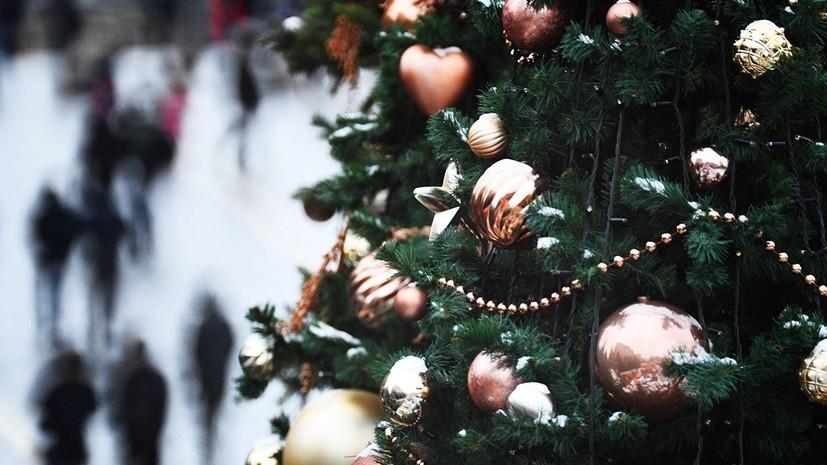 Названы города России с самыми высокими новогодними ёлками