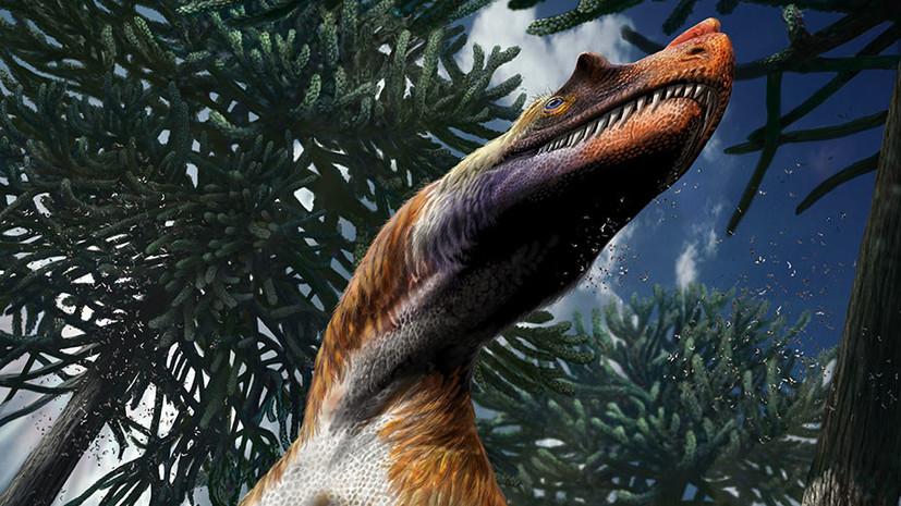 «Боевое оружие» юрского периода: в Италии обнаружен новый род хищных динозавров