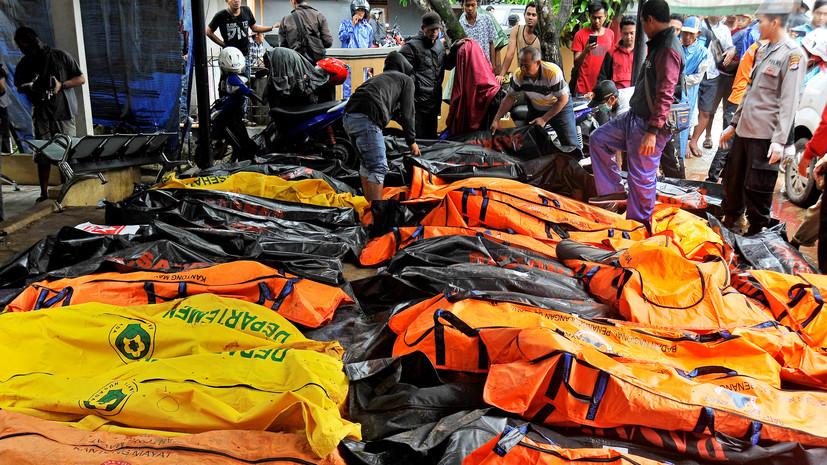 Число жертв цунами в Индонезии достигло 222