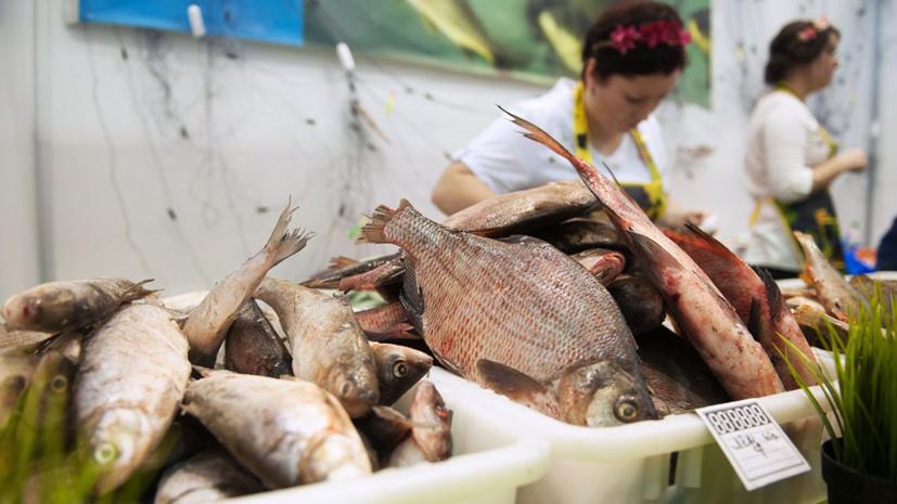 Роспотребнадзор напомнил о пользе жирной рыбы в зимнее время