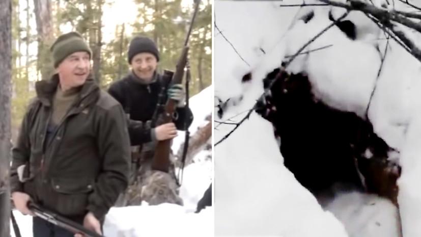 Экологи призвали к ответу губернатора Иркутской области после убийства спящего медведя