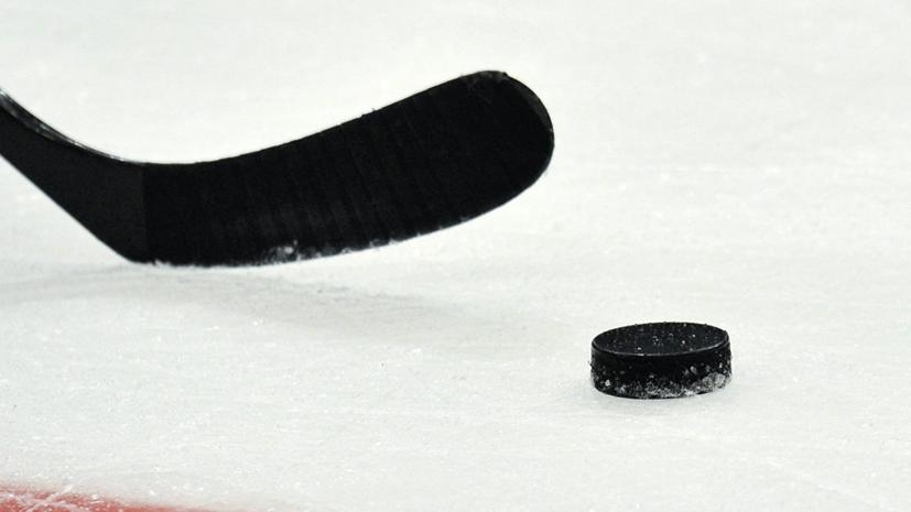 Тренеры команд МХЛ подрались во время матча