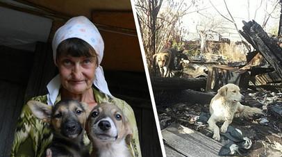 Работающая в Китае российская актриса помогла пережившим пожар саратовцам