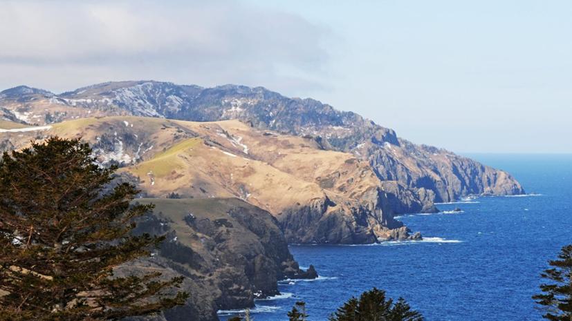 В Госдуму внесён проект о территориальных претензиях со стороны Японии