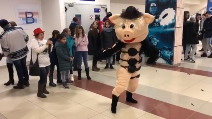 Свинья из «Ну, погоди!» станцевала стриптиз на матче ВХЛ