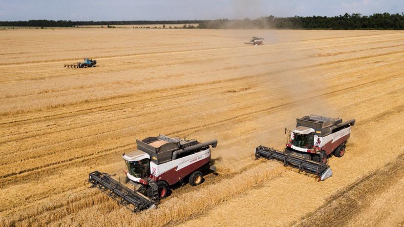 На Украине оценили потери от введения Россией сельскохозяйственного эмбарго