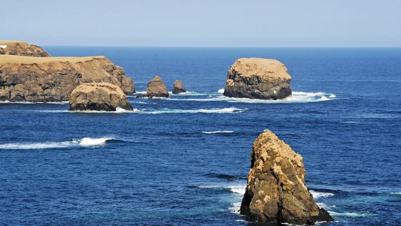 В МИД назвали условие для решения вопроса о мирном договоре с Японией