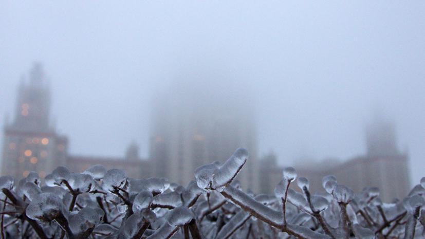 В Росгидромете прогнозируют тёплую неделю в Москве
