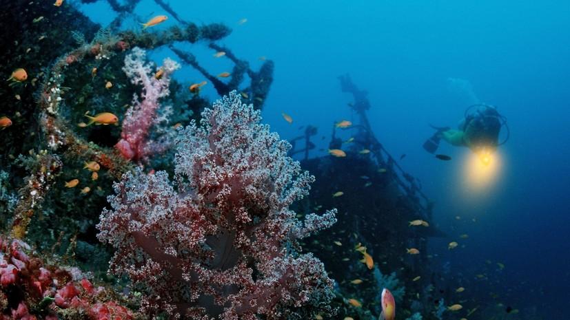 Эксперты рассказали об экспедиции к затонувшему судну «Архангел Рафаил»