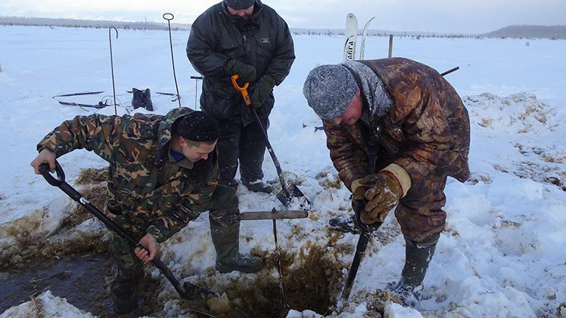 В Тверской области обнаружили фрагменты самолёта времён Великой Отечественной войны