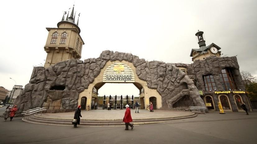 Второй пешеходный мост в Московском зоопарке начнут строить в феврале
