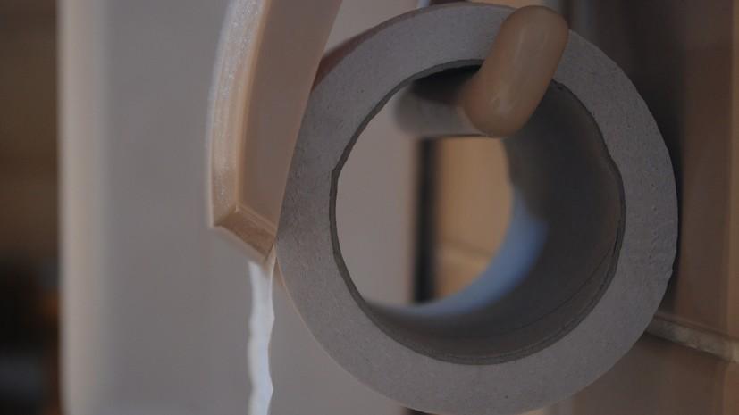 Немецкие СМИ предложили отказаться от туалетной бумаги