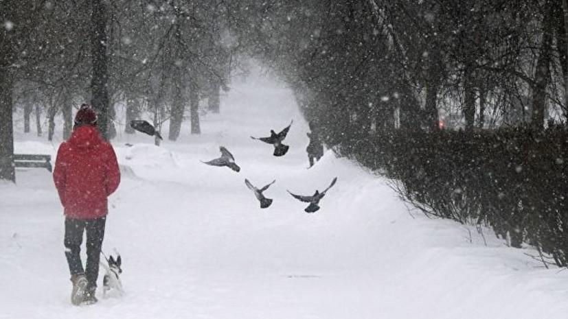 Синоптики пообещали оттепель в Москве на следующей неделе