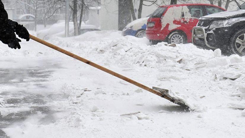 В Саратове уволили чиновницу после отправки учителей на уборку снега