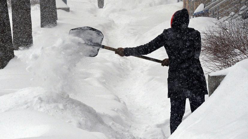 «Никаких указаний сверху не было»: в Саратове уволили чиновницу, ответственную за привлечение учителей к уборке снега