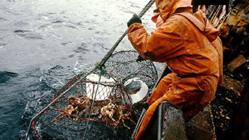 ФСБ задержала в Приморье японское судно за незаконную добычу краба